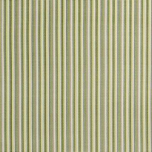 1404 Delray Stripe Kiwi Fabric (Grade B)-0