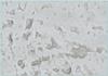 Stone Fiberglass Grey Tabletop-0