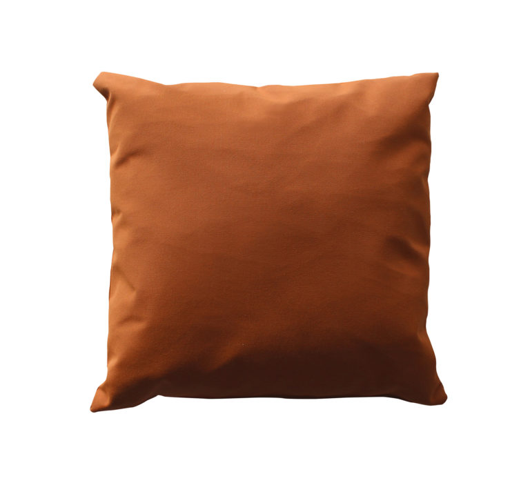 "16"" Square Throw Pillow-572"