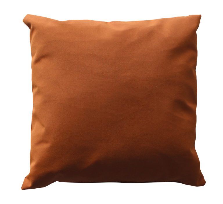 "20"" Square Throw Pillow-561"