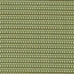 802 Dupoione Kiwi