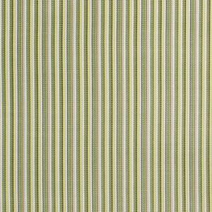 1404 Delray Stripe Kiwi